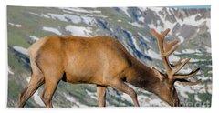 Mountain Top Elk Bath Towel by John Roberts