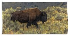 Moving From Summer Into Fall Hand Towel by Yeates Photography