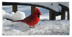 Mr. Cardinal Hand Towel by Melissa Messick