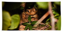 Mr Frog Hand Towel