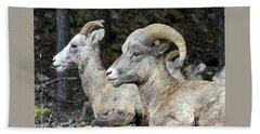 Mt Sheep  Bath Towel
