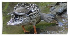 Hand Towel featuring the photograph Muddy Mallard by Kathy Kelly