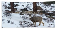 Mule Deer - 8922 Bath Towel