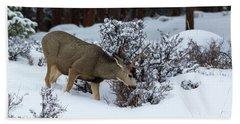 Mule Deer - 9130 Hand Towel