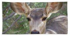 Mule Deer Hand Towel