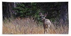 Mule Deer In Utah Hand Towel