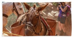 Mule Train On The South Kaibab Trail Hand Towel