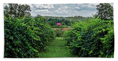 Hand Towel featuring the photograph Muscadine View by Paul Mashburn
