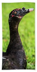 Muscovy Duck-0271 Hand Towel
