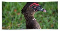 Muscovy Duck-0318 Hand Towel