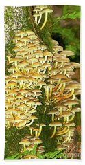 Hand Towel featuring the photograph Mushroom Colony Photo Art by Sharon Talson