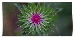 Musk Thistle Bloom Hand Towel by John Roberts