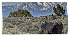 Mustangs In The Sierra Nevada Mountains Hand Towel