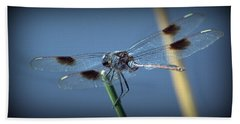 My Favorite Dragonfly Hand Towel