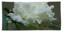 Hand Towel featuring the photograph My Little Peony by Barbara S Nickerson