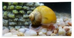 Bath Towel featuring the photograph Mystery Snail by Robert Knight
