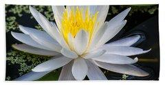 Mystical Lotus Bath Towel by Kenneth Albin