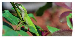 Native Anole Hand Towel by Stefanie Silva