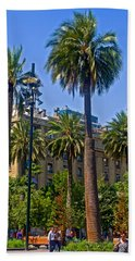 Native Palm Trees In Temperate Zone On Plaza De Armas In Santiago-chile  Hand Towel