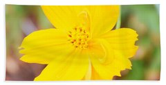 Hand Towel featuring the photograph Nature Colorful Flower Gifts - Yellow by Ray Shrewsberry