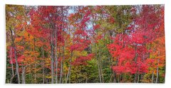 Hand Towel featuring the photograph Natures Autumn Palette by David Patterson