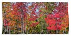 Bath Towel featuring the photograph Natures Autumn Palette by David Patterson