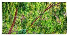 Natures Greens, Yanchep National Park Hand Towel by Dave Catley