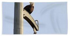 Nature's Philadelphia Eagle Hand Towel