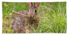 Nesting Rabbit Bath Towel by Terry DeLuco