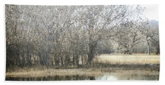 Bath Towel featuring the photograph New Mexico Bosque Trees Lake Forest Landscape  by Andrea Hazel Ihlefeld
