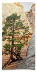 New Mexico Tent Rocks Slot Canyon Tree Landscape Hand Towel by Andrea Hazel Ihlefeld