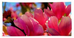 New Orleans In The Dead Of Winter Spring Japanese Magnolias Hand Towel by Michael Hoard