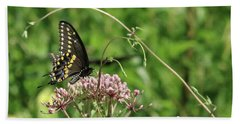Male American Swallowtail Papilio Polyxenes Hand Towel