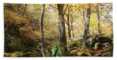 Niche In Smuggler's Notch Hand Towel by Felipe Adan Lerma