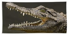 Nile Crocodile Bath Towel by Tony Beck