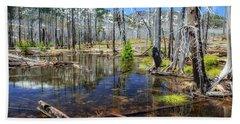 Bath Towel featuring the photograph No Name Pond by Cat Connor