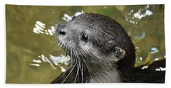 North American River Otter Swimming In A River Hand Towel