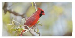 Northern Cardinal Hand Towel