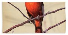 Northern Cardinal Profile Hand Towel by Ricky L Jones