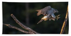 Northern Goshawk's Landing Bath Towel by Torbjorn Swenelius