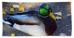 Northern Male Mallard Duck Bath Towel