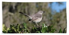 Northern Mockingbird Hand Towel by Carol Groenen