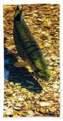 Northern Pike Bath Towel by Richard Engelbrecht