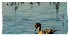 Northern Pintail At The Wetlands Bath Towel