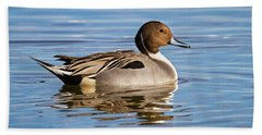 Northern Pintail Duck Bath Towel