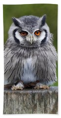 Northern White Faced Owl Bath Towel