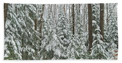 Northern Winter Hand Towel by Michael Peychich