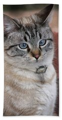 Not Impressed  Hand Towel by Kim Henderson