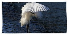 Not Under Here - Birds - Snowy Egret Hand Towel by HH Photography of Florida