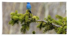 Notice The Pretty Bluebird Hand Towel by Yeates Photography